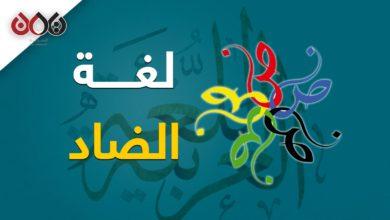 Photo of غرائب اللغة العربية – في يوم عيدها تعرف على أهم خصائصها ؟ (فيديو جرافيك)