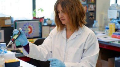 Photo of أمريكا تبدأ اليوم أول تجربة على البشر للقاح يحمي من فيروس كورونا