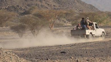 Photo of التحالف يعلن هدنة في اليمن من طرف واحد لمدة أسبوعين