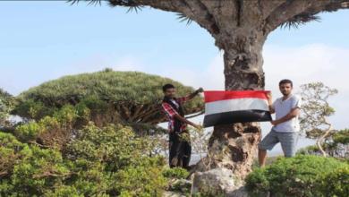 Photo of وكالة: قيادات حكومية بسقطرى تتوجه إلى الرياض