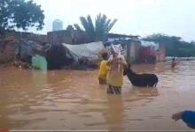 Photo of أبين: أمطار غزيرة تتسبب بحدوث فيضانيات وتضرر عشرات المنازل