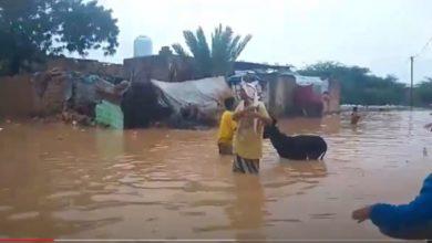 Photo of أبين: أمطار غزيرة تتسبب بحدوث فيضانات وتضرر عشرات المنازل