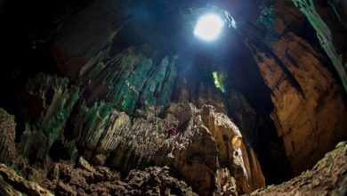 Photo of قطع أثرية في كهف بالمكسيك تظهر أن وصول البشر لأمريكا الشمالية أقدم مما يُعتقد