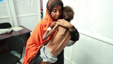 Photo of الصليب الأحمر : 20 مليون يمني لا يجدون ما يأكلون