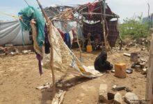 Photo of مفوضية اللاجئين: تضرر 9 آلاف عائلة جراء السيول في محافظتي حجة والحديدة