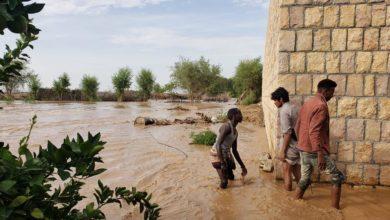 Photo of ارتفاع ضحايا السيول والأمطار في اليمن إلى 270 قتيلاً وجريحاً