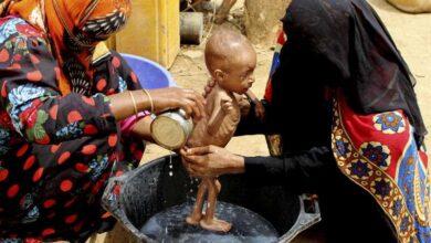 Photo of الأمم المتحدة:10 ملايين يمني على حافة المجاعة وربع السكان يعانون من سوء التغذية