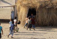Photo of طلاب اليمن يدرسون في فصول من قش