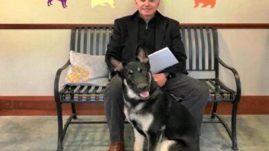 "Photo of ""بايدن"" يتعرض لكسر في قدمه أثناء اللعب مع كلبه"