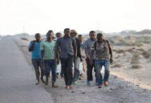 Photo of لماذا يهاجر الأفارقة إلى اليمن رغم الحرب؟.. وكالة روسية تجيب