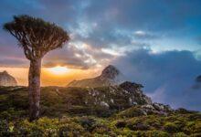 "Photo of ""اليمن"".. طبيعة ساحرة وأرض فائقة الجمال يطغى عليها الاقتتال"